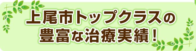 上尾市トップクラスの豊富な治療実績!